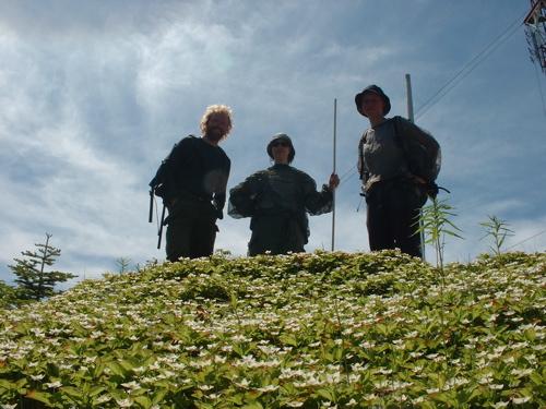 field-workers