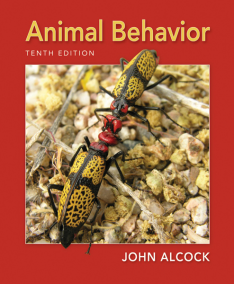 animalbehavior10