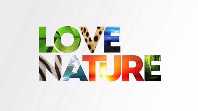 the nature of love pdf